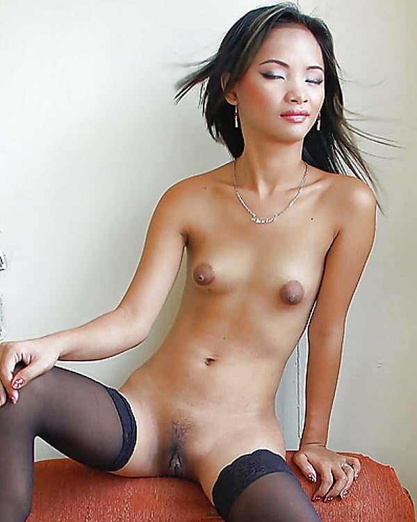 Large nude asian puffies